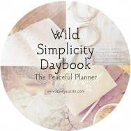 daybook-square-peaceful-circle