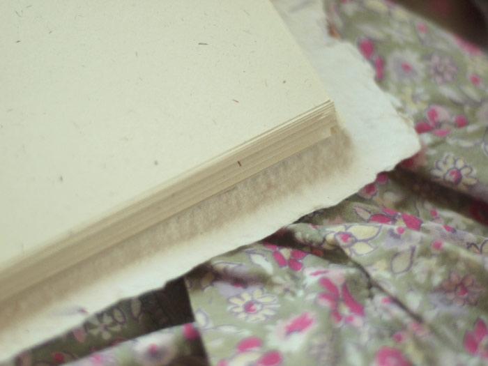 rntpapercorners